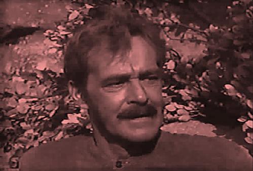 Miguel Campillo, personaje de El Zorro
